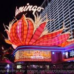 Flamingo's at Flamingo Casino Las Vegas Review