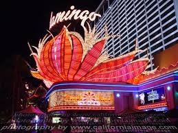 Enjoy Celebrity Radio's Flamingo Wildlife Habitat Las Vegas…. If your looking for an Oasis in Sin City, stop my the Flamingo and see the birds, […]