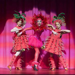 Tour Priscilla Review