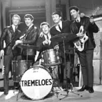 Dave Munden The Tremeloes Exclusive Life Story Interview 2014