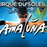 Tour Dates Amaluna