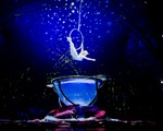Cirque Du Soleil Amaluna Review 2015 Tour Dates