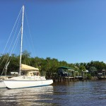 Everglades Florida Air Boat Review (16)