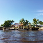 Everglades Florida Air Boat Review (7)