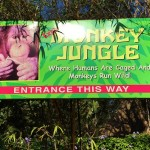 Monkey Jungle Miami Review 2015