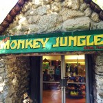 Monkey Jungle Miami Review (3)
