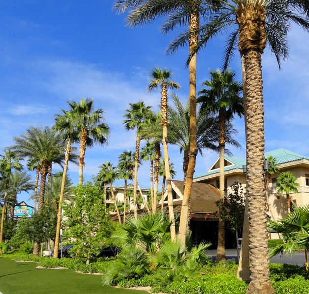 Enjoy Celebrity Radio's Tahiti Village Resort And Spa ~ Las Vegas….. Tahiti Village is my favourite place to stay in Las Vegas EVER! I have […]