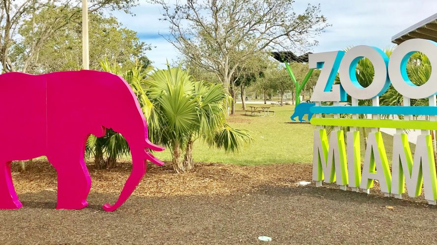 Review Miami Zoo.… Zoo Miami, formerly known as Miami MetroZoo, is the largest and oldest zoological garden in Florida, and the only tropical zoo in […]