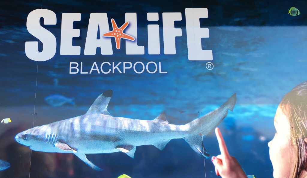 Review sealife Blackpool