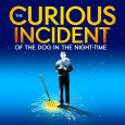 Review UK Tour The Curious Incident Of The Dog…. The Curious Incident of the Dog in the Night Time is one of the most original, […]